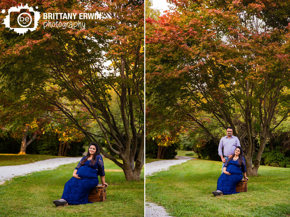 Camby-Indiana-japenese-maple-tree-fall-red-leaves-maternity-portrait-session-sitting-on-chest.jpg