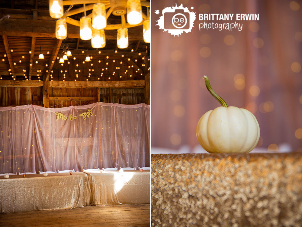 mr-mrs-pink-sheer-backdrop-barn-wedding-photographer-twinkle-lights.jpg