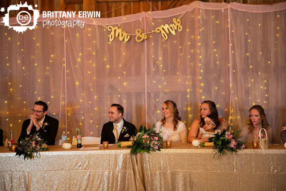 Lafayette-Indiana-wedding-photographer-pink-sheer-mr-mrs-background-head-table.jpg