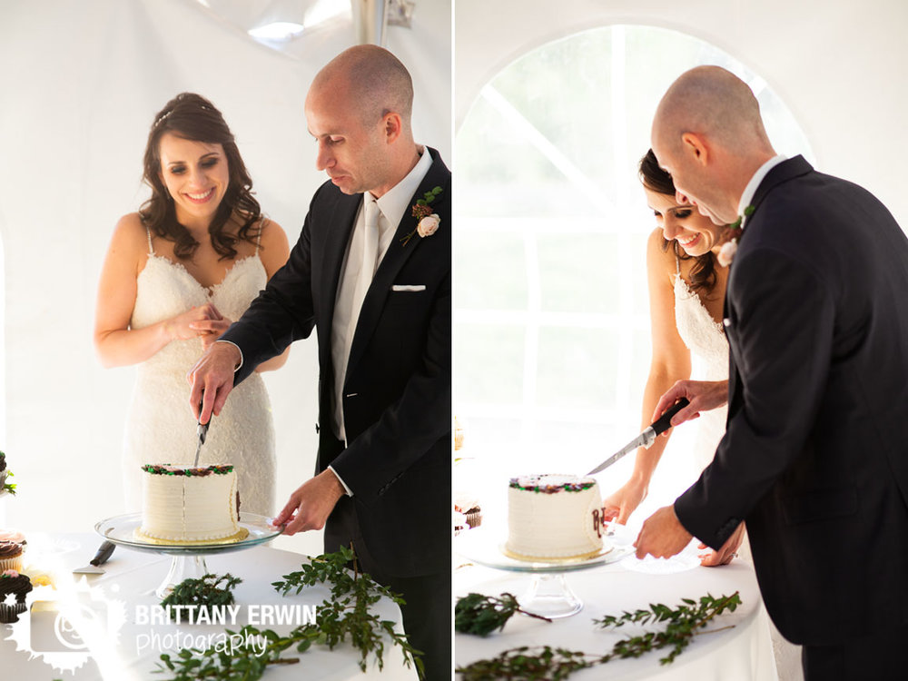 FIshers-Indiana-cake-cutting-wedding-photographer-bride-groom-cut-flying-cupcake.jpg