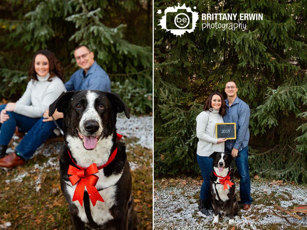 Indianapolis-pet-couple-faimly-photographer-snow-mini-session-on-sled.jpg