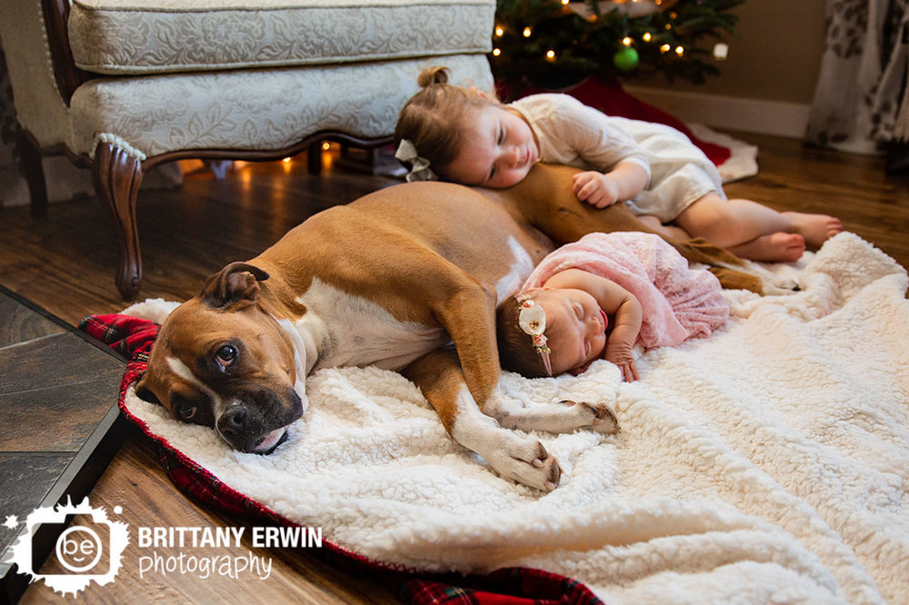 Indianapolis-newborn-pet-baby-girl-newborn-with-sister-and-dog.jpg