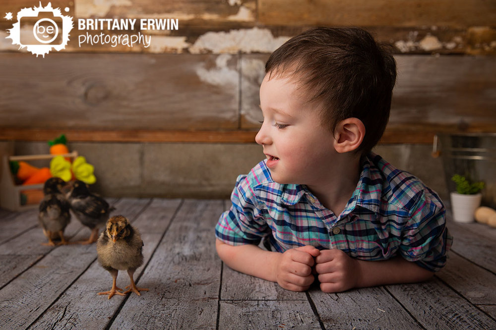 Indianapolis-studio-portrait-photographer-toddler-boy-with-baby-chicks-spring-minis.jpg
