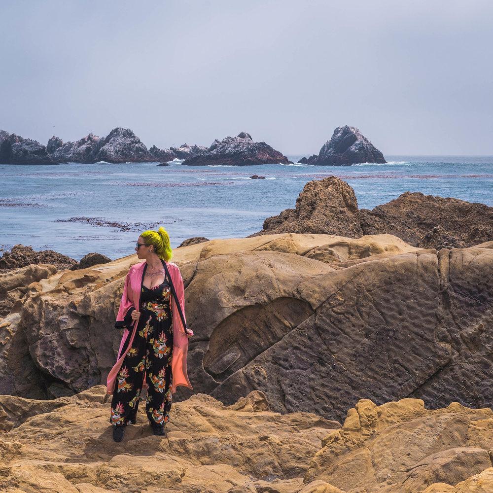 Point Lobos- Big Sur California - The Chaos Collective