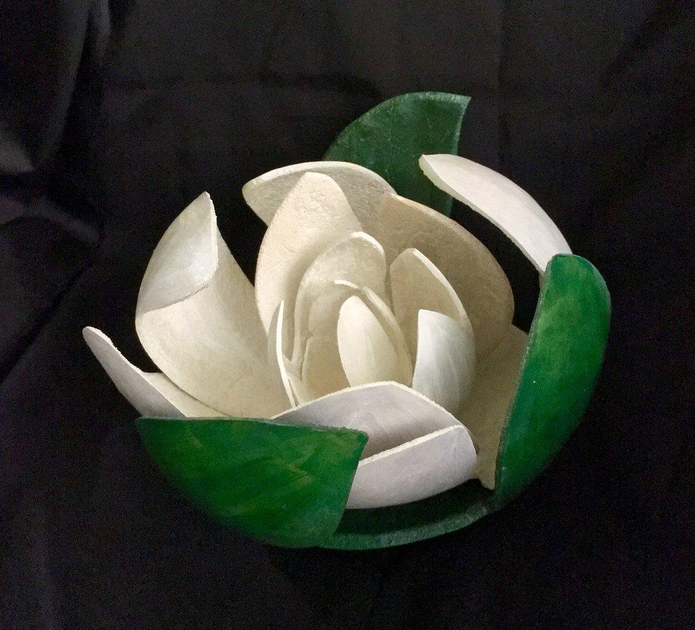 gourd magnolia.JPG