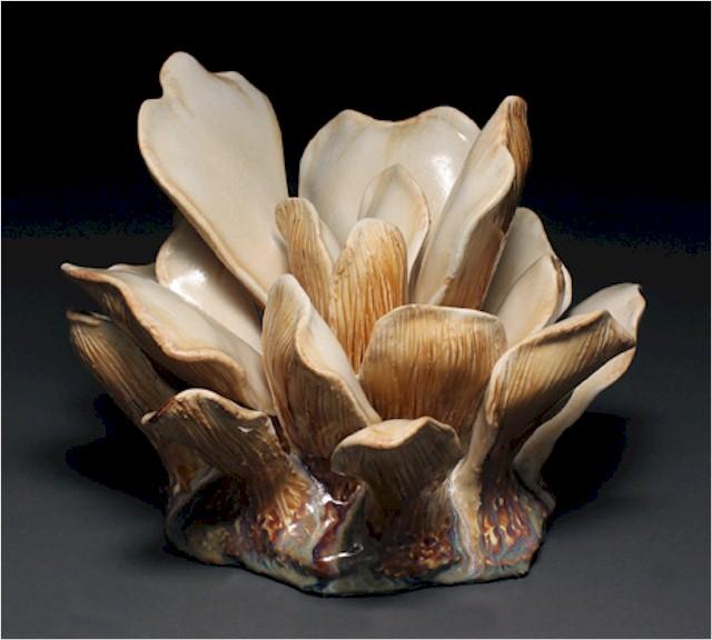 mushroom_grouping_small.jpg