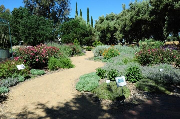 4-ucanr.edu-Honey Bee Haven-Garden-The Sibbett Group.jpg