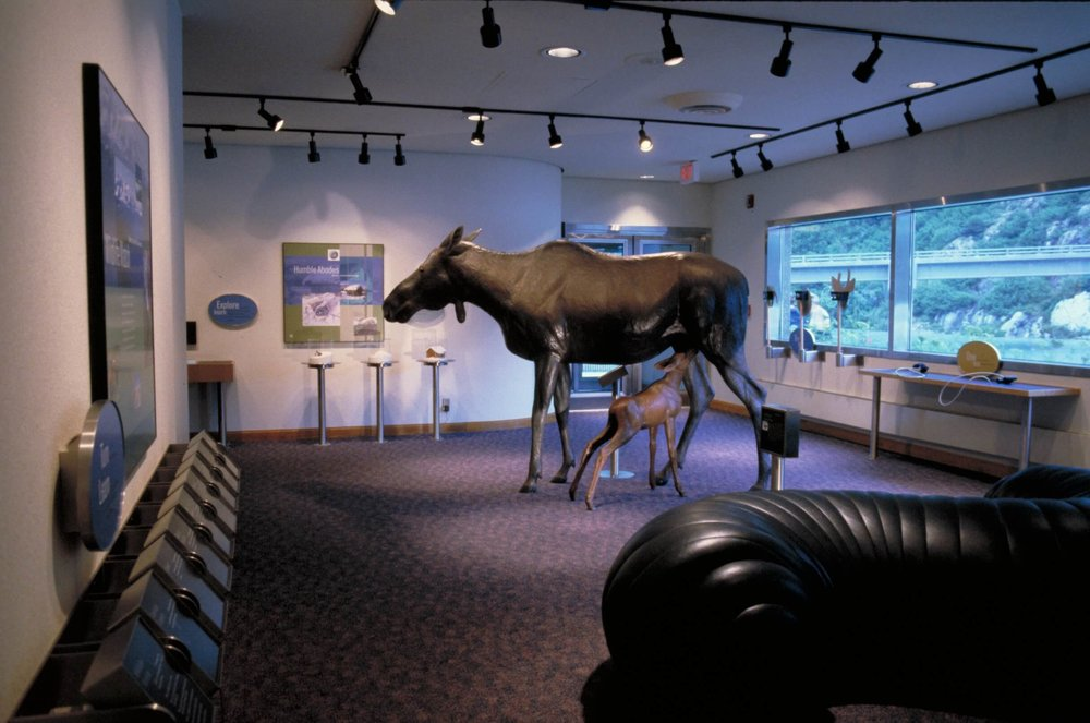 18-Begich Boggs Visitor Center-The Sibbett Group-Wild Side.jpg