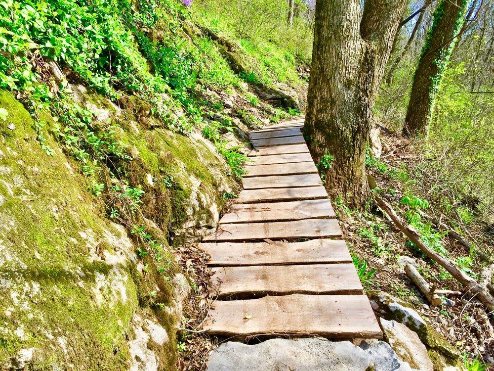 2-Coler-Wood Bike Trail-The Sibbett Group.jpg