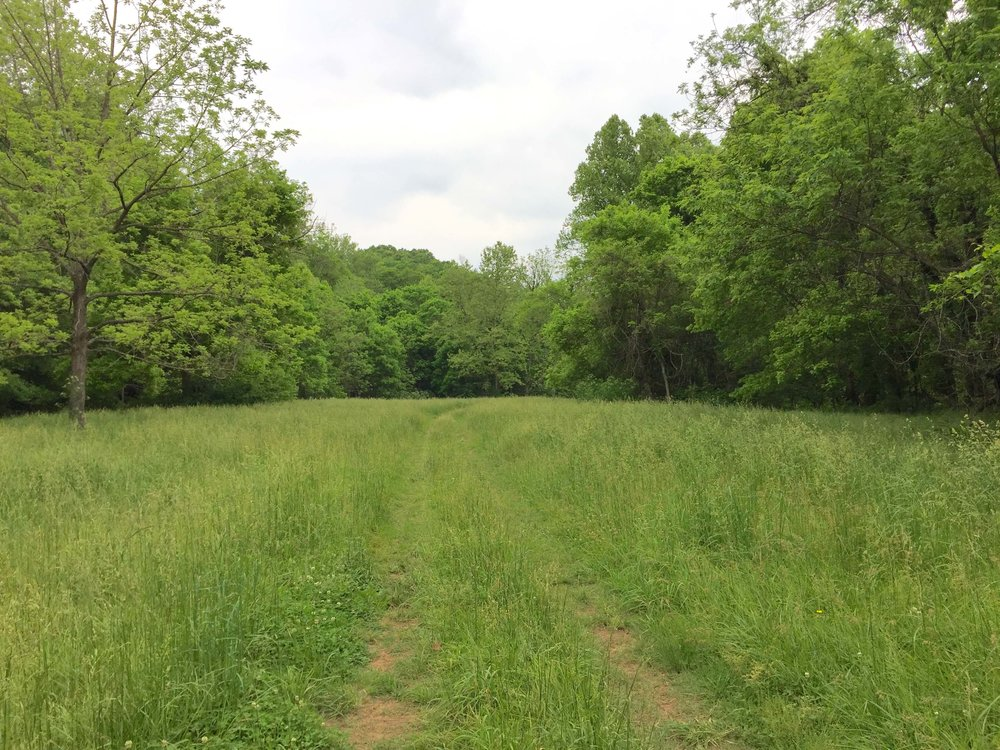 5-Coler-Meadow-The Sibbett Group.jpg