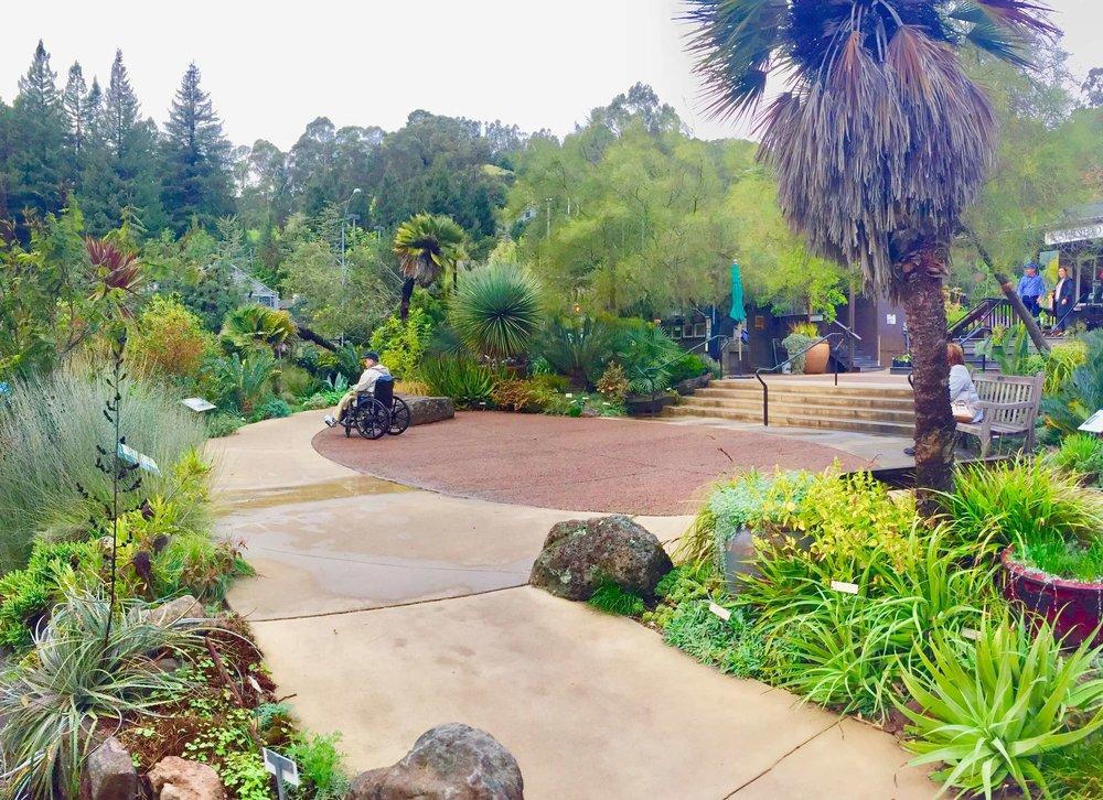 2-University of California Botanical Garden at UC Berkeley-The Sibbett Group-Gathering Area.jpg