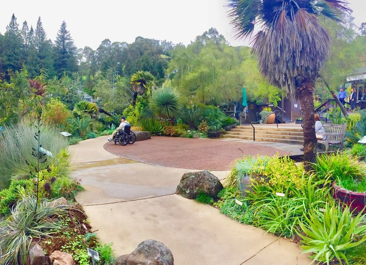 Interpretive Experience Plan for Botanical Garden at Berkeley — The ...
