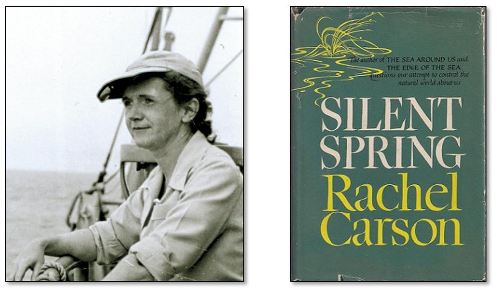 Rachel Carson.png