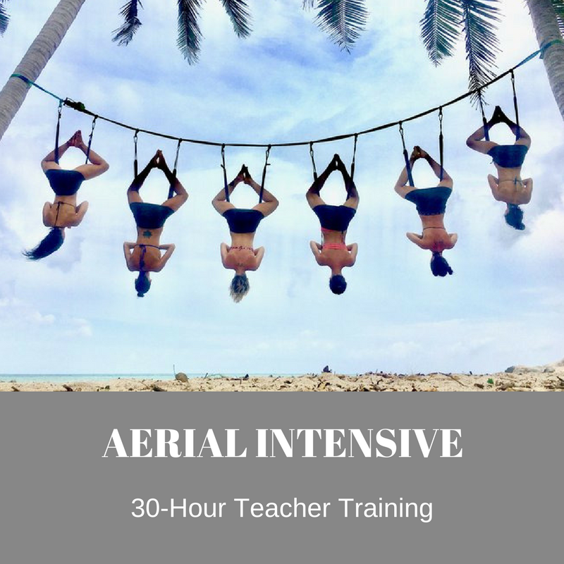 Aerial Intensive - Ready to get certified as an Aerial Yoga Instructor? Mark your calendar for HARD yoga's Aerial Intensive teacher training November 2 - 5. LEARN MORE