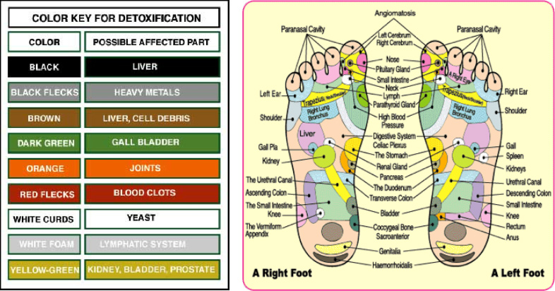 detox-foot2.jpg