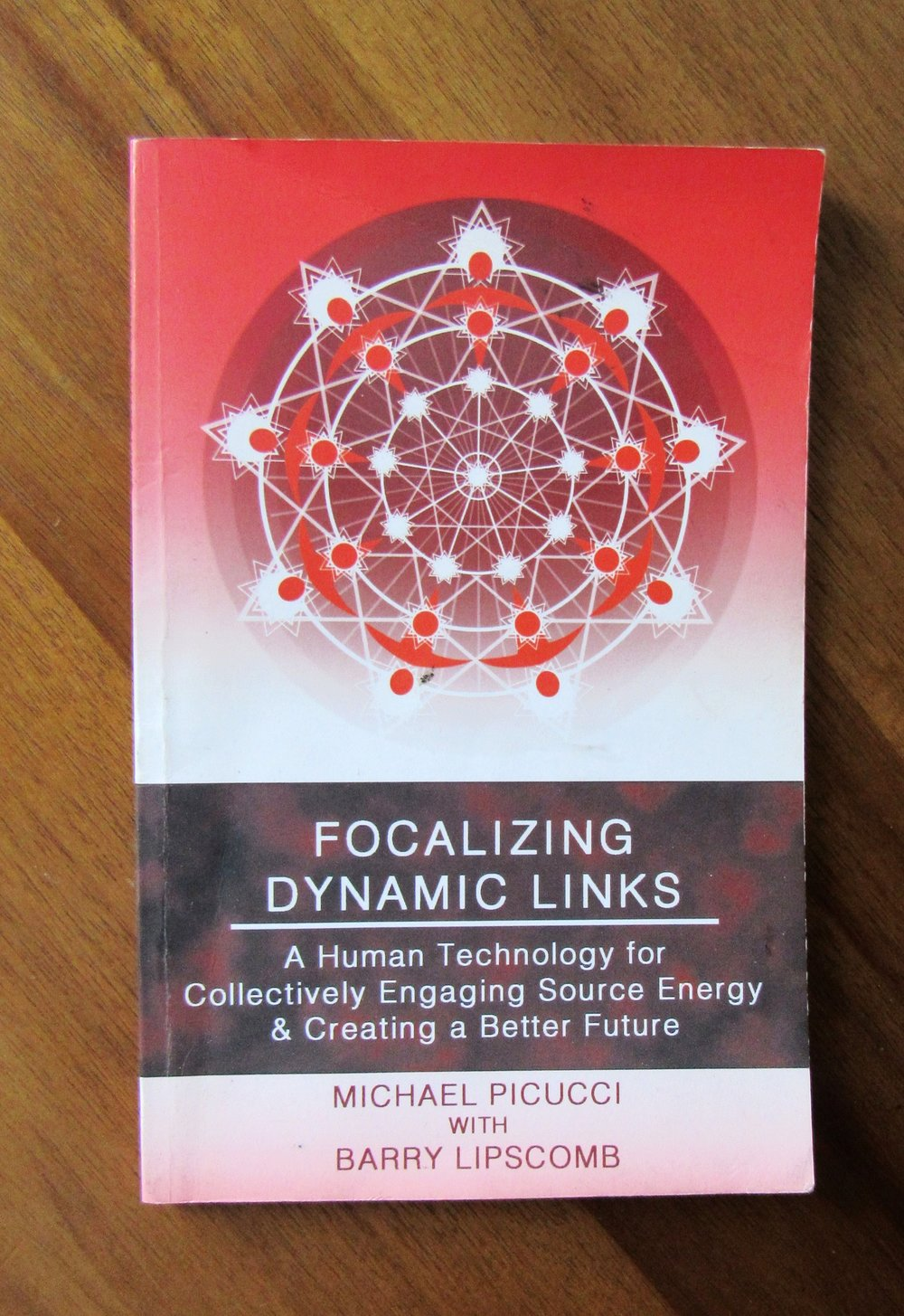 Focalizing Dynamic Links      Focalizing Dynamic Links   is a technology which brings conscious intention to relationship in order to foster an opportunity for connecting and communicating in a new way, effecting transformation through our institutions and organizations.