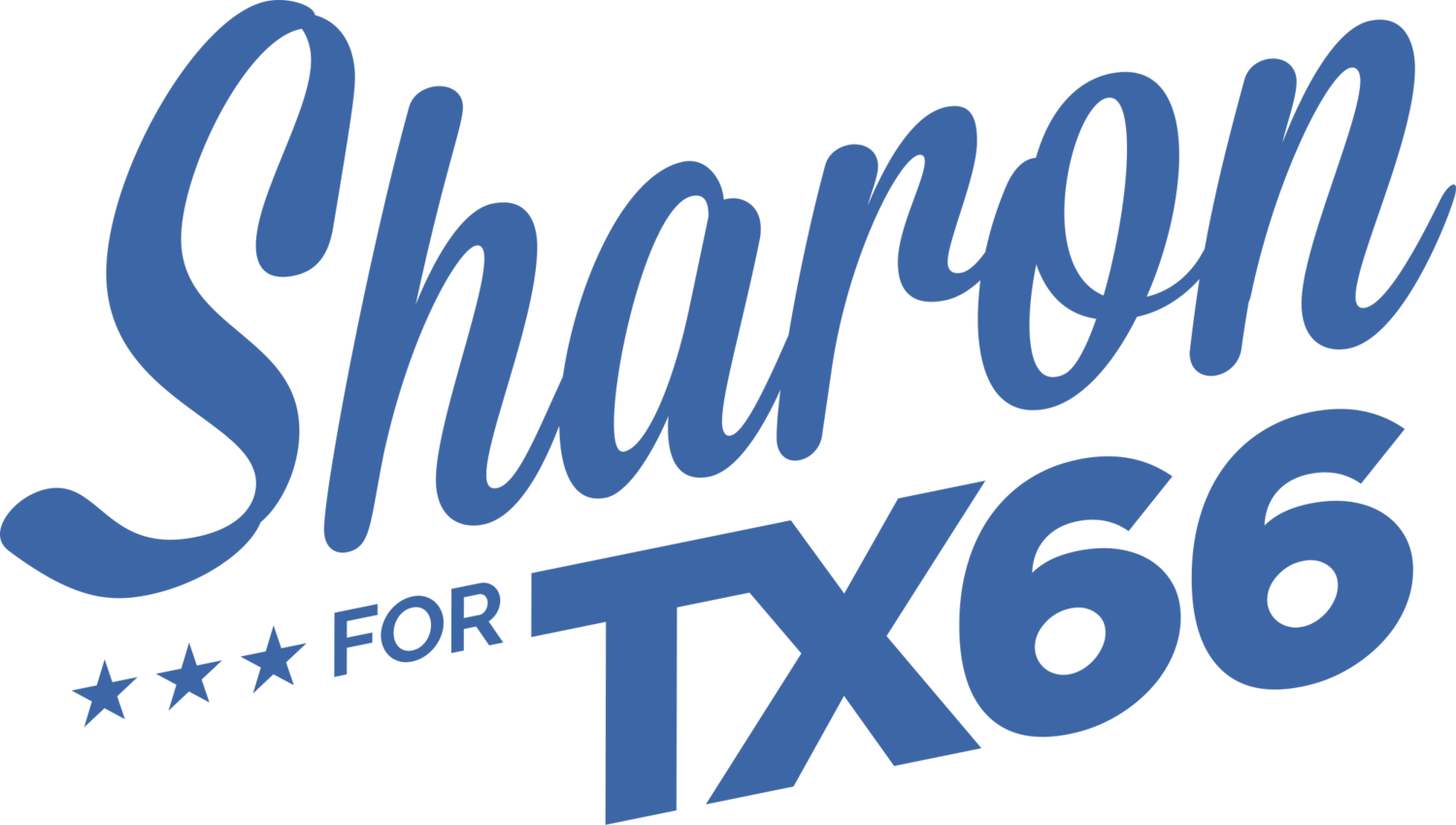 Sharon Hirsch for Texas House District 66