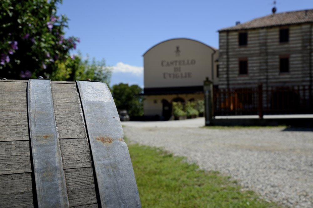 CASTELLO DI UVIGLIE winery 1 photo.jpg