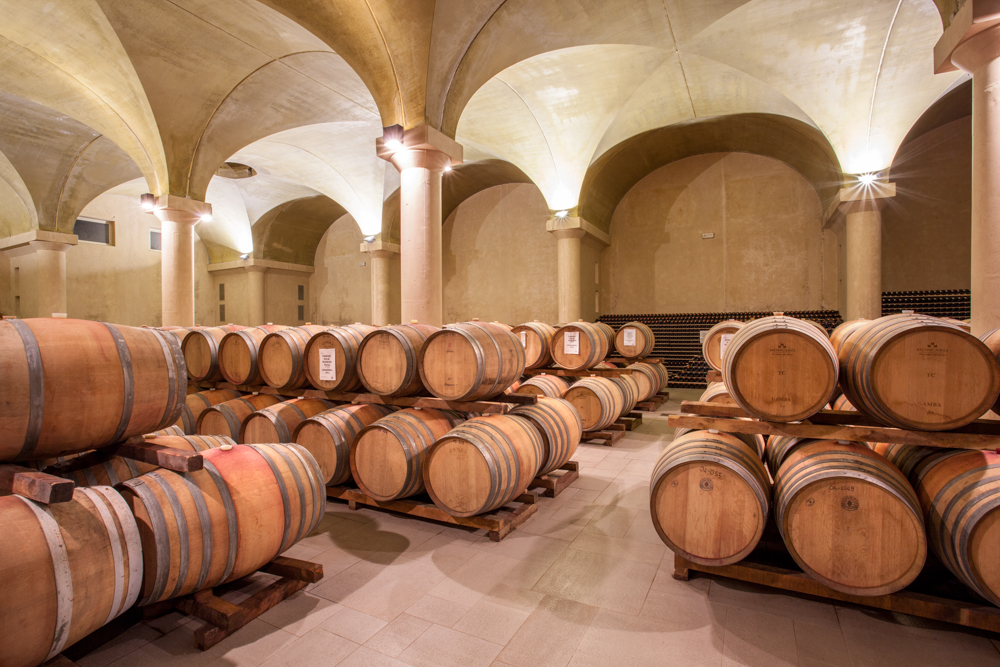 MONCARO TERRE CORTESI winery.jpg
