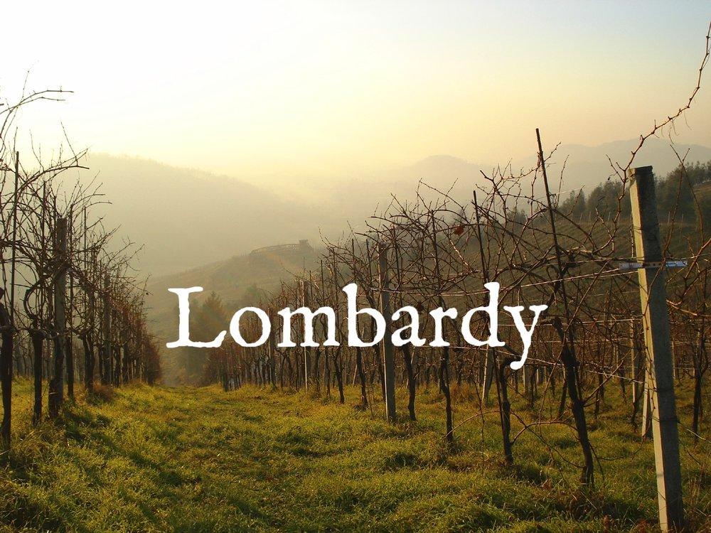 lombardy-fall-vineyard-view.jpg