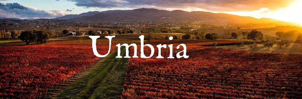 umbria-perticaia-vineyards.jpg