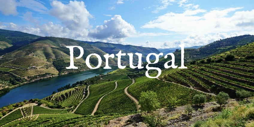 Douro_Valley_Vineyards.jpg