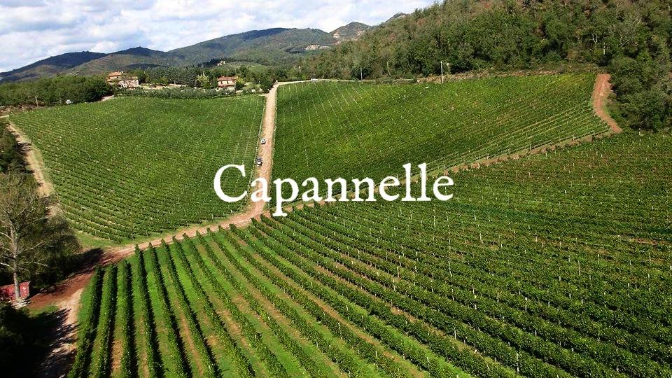 capannelle-gallery18.jpg