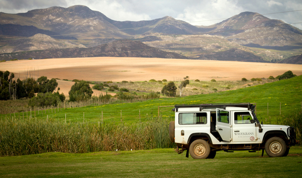 wildekrans-botriver-wines-overberg-south-africa-wine-02.jpg
