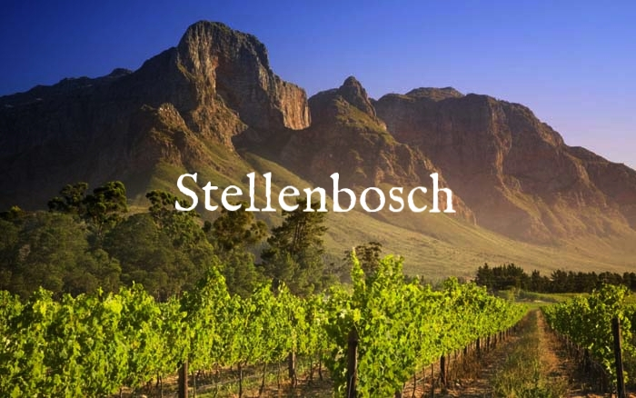 6-South-African-wine-routes.-Photo-by-dreamtravelvacation.com_2.jpg