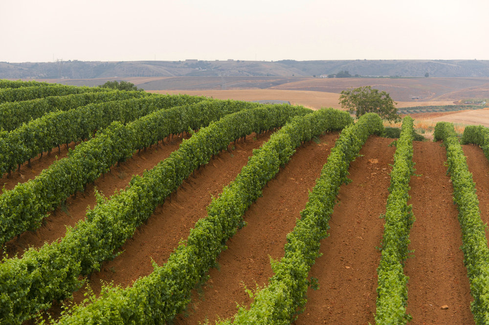 Photo Basilicata 2.jpg