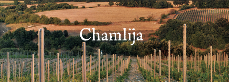 Chamlija-Vineyards.png