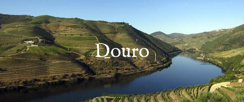cruzeiro-douro-1dia-porto-regua-porto-subida-sabado.jpg