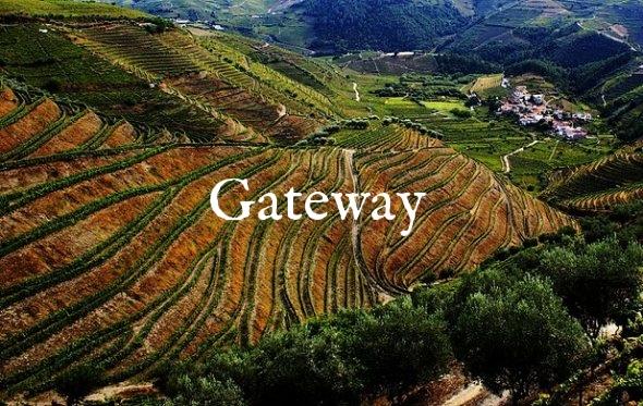 Douro-Wine-590x373.jpg
