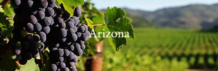 vineyard1-700.png