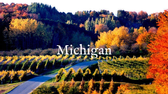 chi-wg-fall-foliage-makes-for-a-beautiful-backdrop-to-michigans-vineyards-20130905.jpg