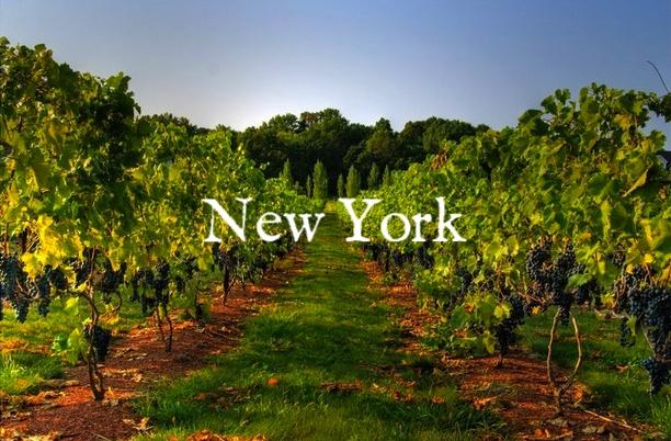 nj-winery.jpg