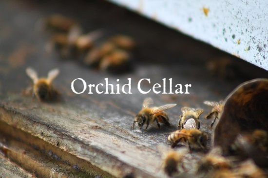 orchid-cellar-winery.jpg