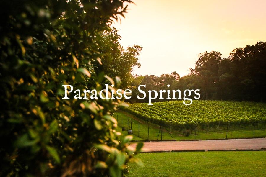 Paradise+Springs+Winery,+Paradise+Springs+Winery+Wedding+Photography,+Clifton+Virginia+Wedding+Photography,+Paradise+Springs+Winery,+Washington+DC+Wedding+Photography,+Washington+DC+Gay+Wedding+Photography.jpg