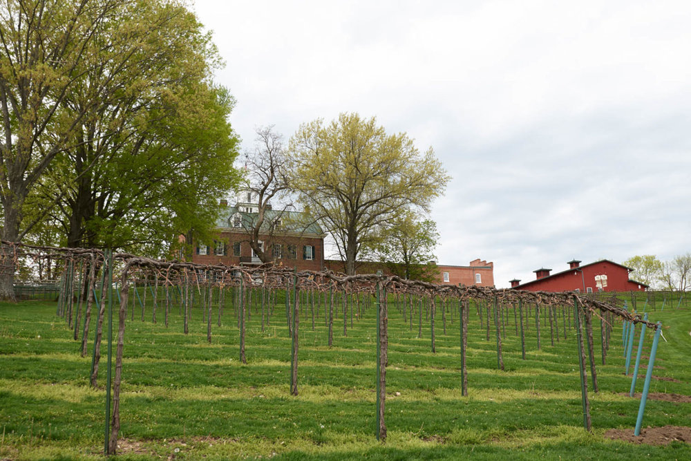 0017Winery_Web.jpg