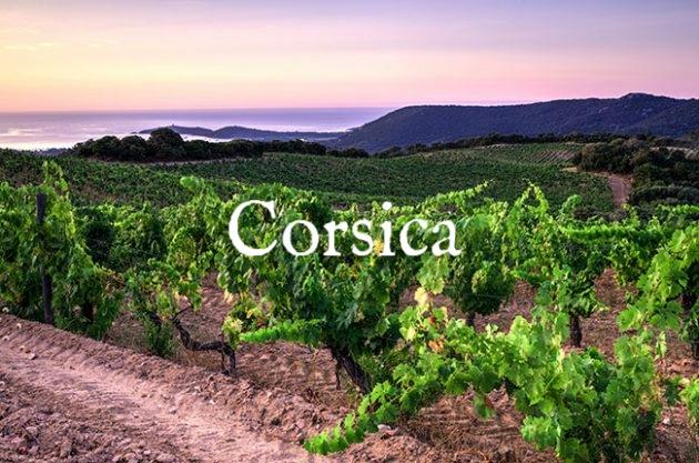 Corsica-wineries-Torraccia-630x417.jpg