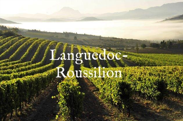 France-Languedoc-Roussillon-Blanquette-de-Limoux-vineyards-credit-Partick-Castagnas-630x417.jpg