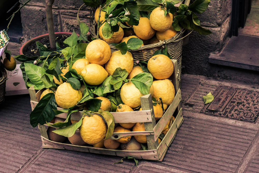 Photo Lemons in CinqueTerre.jpg