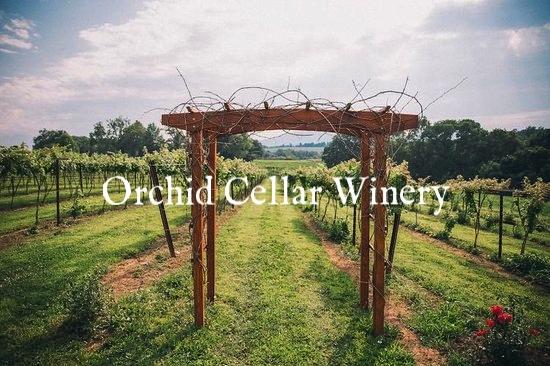 orchid-cellar-winery.jpg