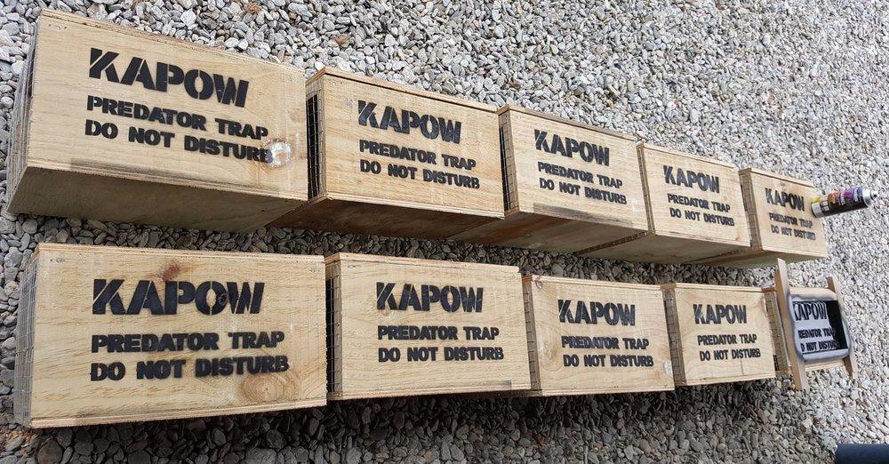 Wakatipu Wildlife Trust - KAPOW Traps