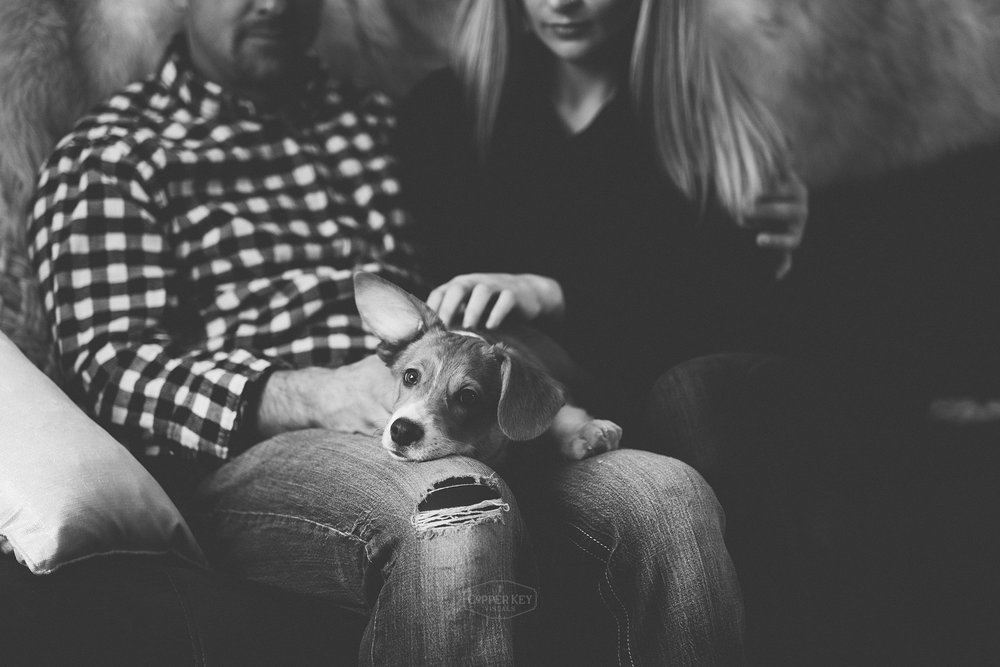 Wisconsin Family Puppy Session Copper Key Visuals-4.jpg