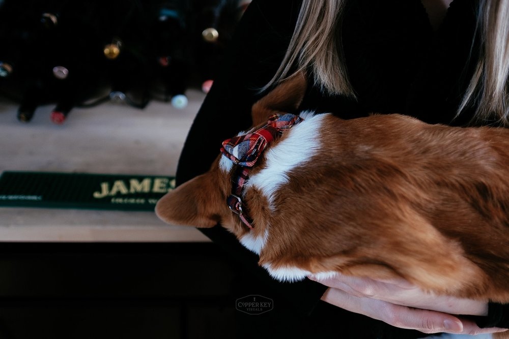 Wisconsin Family Puppy Session Copper Key Visuals-27.jpg