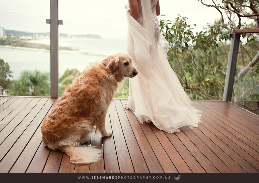 Brisbane Wedding Phoographer Jmp-jardine-w-229