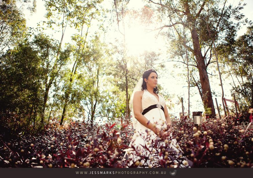 Brisbane Wedding Phoographer Jmp-taylor-w-167 1