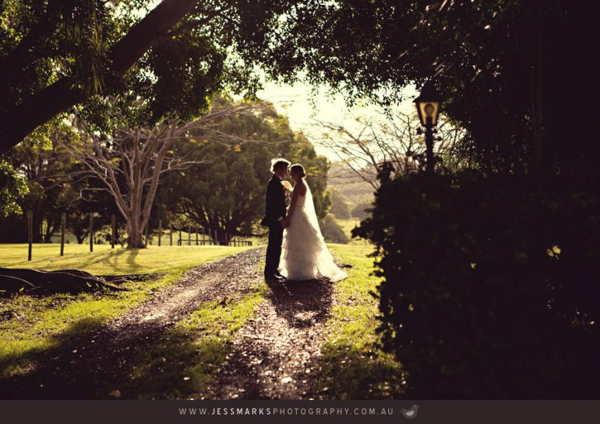 Brisbane Wedding Phoographer Jmp-mitchell-animoto-876