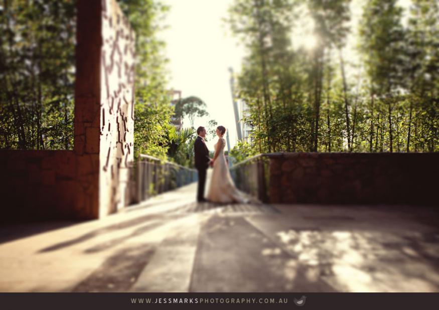 Brisbane Wedding Phoographer Jmp-thomas-w-538